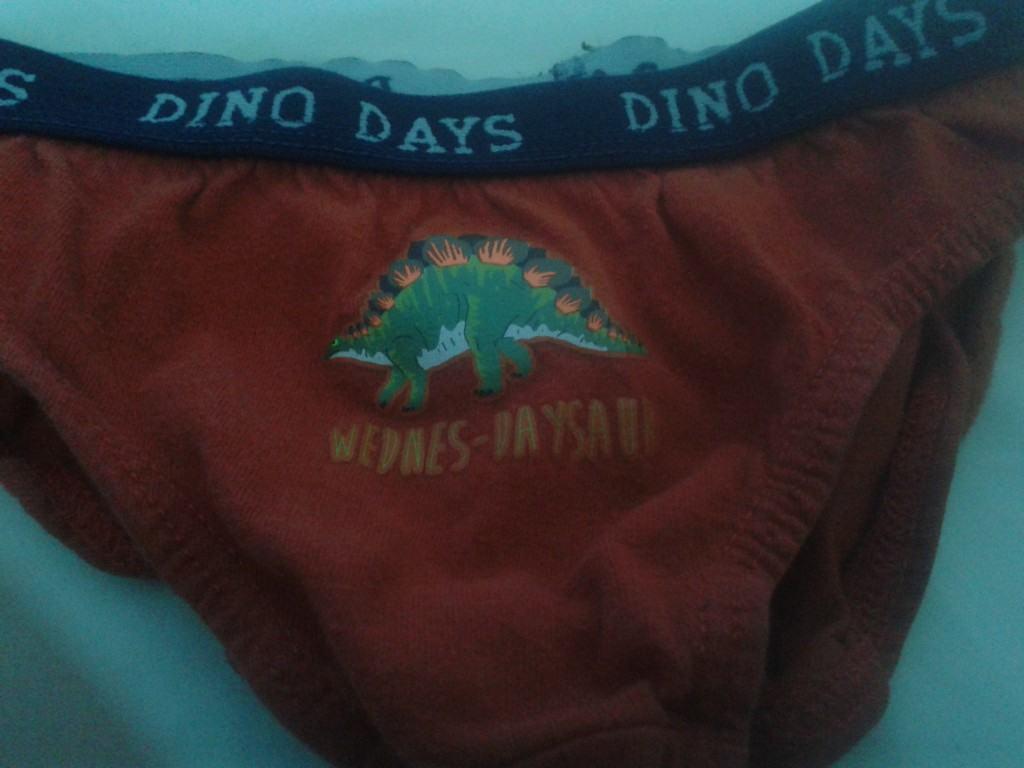 Wednesday's Pants