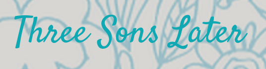 Three Sons Later logo long