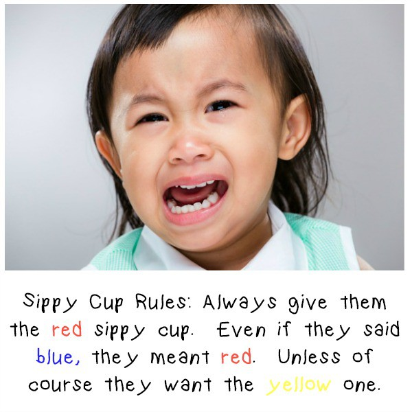 Sippy Cup Image