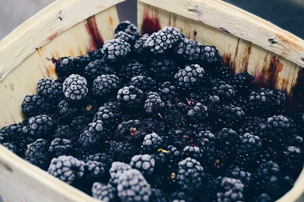 Autumn healthy food
