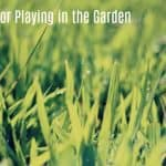 Rules for Playing in the Garden
