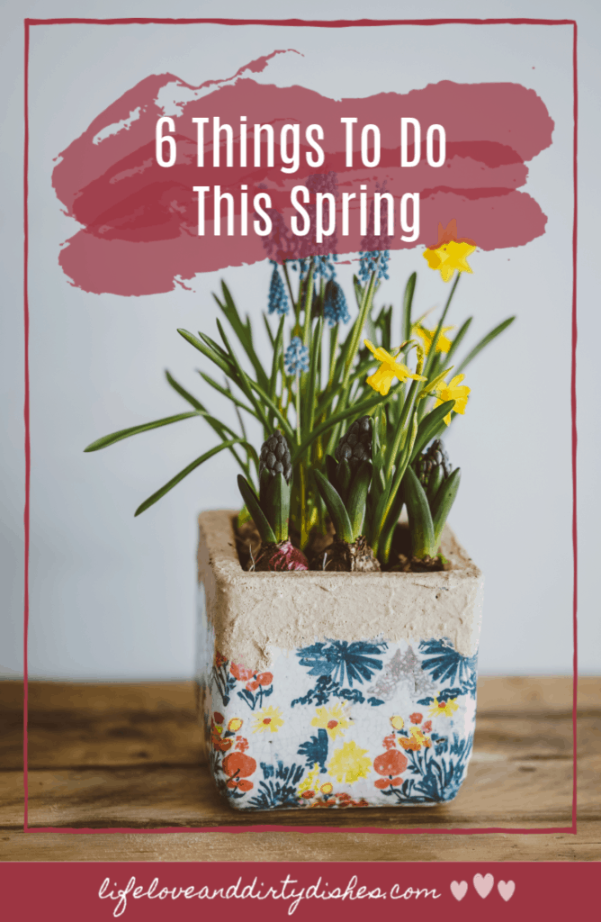 ideas for things to do this Spring season