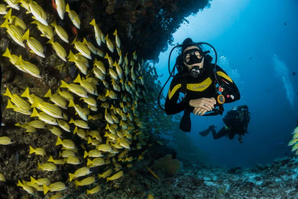 must-haves for scuba divers